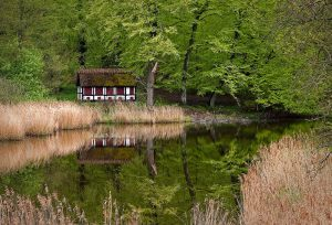 16_Erik_Jensen_House-in-the-wood
