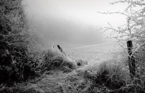 """Laurits A. Hansen Herlev Fotoklub """"Rimfrost"""" Bedste landskab"""