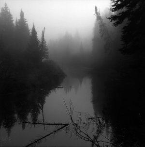 Bedste_landskab_-_Tage_Christiansen_-_Skov_og_vand