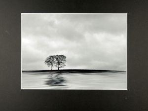 Kjeld AgerskovØenSølv