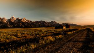 3371_Joergen Fynsoe_God_morgen_i_Grand_Teton-USA