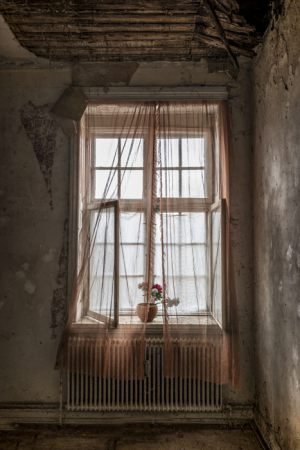 3603_Dorthe Jakobsen_Abandoned_Windows_II