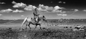 1353-Michael-Johansen-Mongolia-Faelles-dommerdiplom