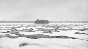 3019-Nils-Hastrup-Frost-