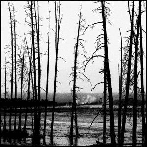 3707-Lise-Bryndum-Yellowstone-