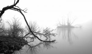 1470-Lars-Hjortoe-Misty_island-