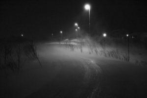 543-Helle-Lorenzen-On_way_home-
