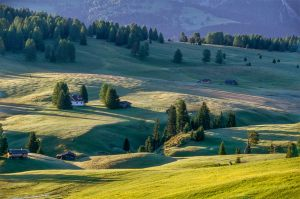 2693 Fotograf  Henning Bossen  -  Alpe di Siusi in morning light