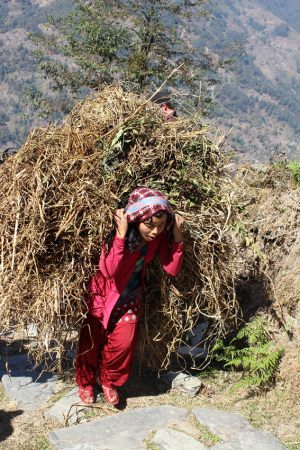 8362 Kirsten Hyldager     Working girl in Nepal