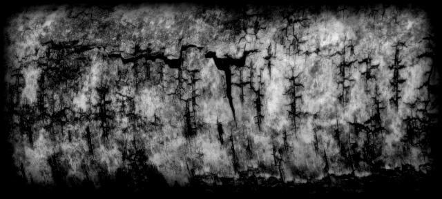 Abstrakt Birk.