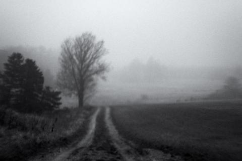 Quiet moment-.jpg