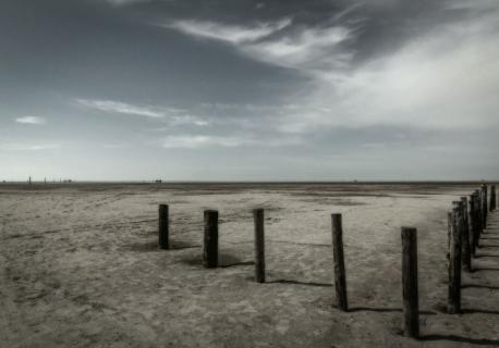Vadehavet2.jpg