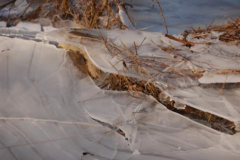 Isen brydes