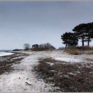 Nivå strand