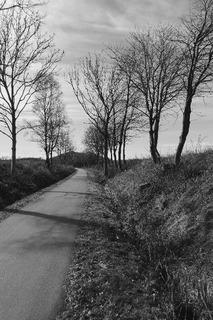 Cykelvejen mellem Rønne og Nyker