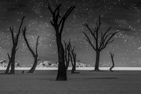 15.450 Lunar landscape.jpg