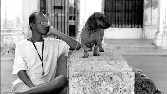 Mand med Hund - Havanna