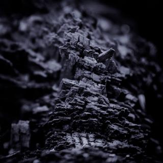 Dark Nature X