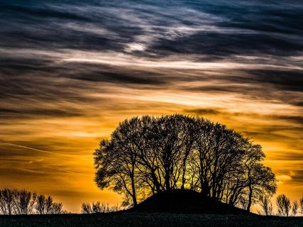 Carlo_Pedersen_Swears_the_Mound.jpg
